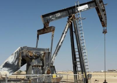 Oil & Gas Advisory Services